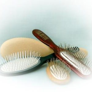 Dog Brushes